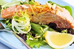 Salat mit gegrillten Lachsen Stockfotografie