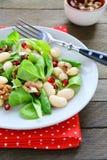 Salat mit gekochten Bohnen stockfoto