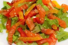 Salat mit Gemüse Stockfoto