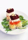 Salat mit Gemüse und Heringen Lizenzfreies Stockbild