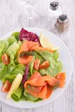 Salat mit geräuchertem Lachs Stockfotografie