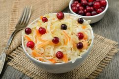 Salat mit Kohl, Karotten und Moosbeeren Lizenzfreies Stockbild