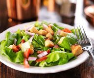 Salat mit Kopfsalat, Tomate und Croutons lizenzfreies stockbild