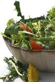Salat mit Löwenzahnblume Stockfoto