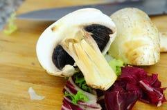 Salat mit Pilzen Lizenzfreie Stockbilder