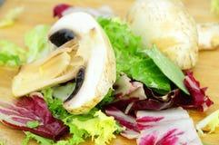 Salat mit Pilzen Stockfotografie