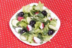 Salat mit schwarzen Oliven und Rettich Lizenzfreies Stockfoto