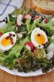 Salat mit Speck und Ei Stockbild