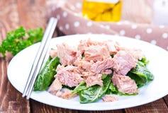 Salat mit Thunfisch Lizenzfreie Stockfotos