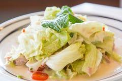 Salat mit Thunfisch für gesunde Art Lizenzfreie Stockfotografie