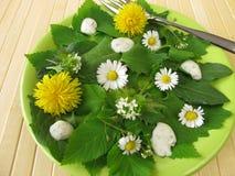 Salat mit wilden Kräutern Stockbilder