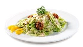 Salat-Platte Stockbild