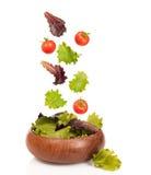 Salat-Schüssel Lizenzfreie Stockbilder