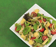 Salat-Schüssel mit buntem Lebensmittel-Käse und Gewürzen des strengen Vegetariers Lizenzfreies Stockbild
