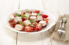 Salat with tomato and goat cheese Stock Photography