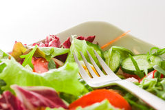 Salat und Gabel-Nahaufnahme Stockfotografie