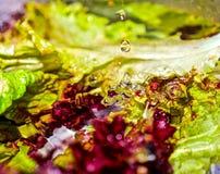 Salat und Wasser Stockfotos