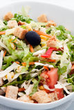 Salat végétal Image stock
