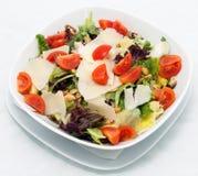 Salat vegetal Foto de Stock
