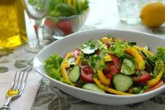 Salat vom Gemüse Stockfotos