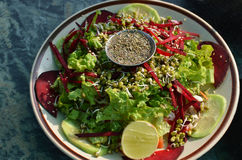 Salat vom Gemüse das Grün Lizenzfreie Stockfotos