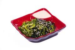 Salat von den Seealgen auf einem weißen Hintergrund Stockbilder