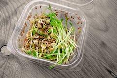 Salat von gekeimten Samen von Flachserbsenlinsen und von anderen K?rnern Makrobiotisches Nahrungsmittelkonzept stockbild