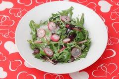 Salat von geschaukelt und Rettich lizenzfreie stockfotografie