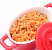 Salat von Linsen Lizenzfreies Stockbild