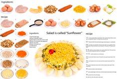 Salat wird Sunflower genannt Lizenzfreies Stockfoto