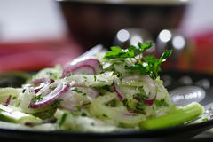Salatanschluß Lizenzfreies Stockfoto