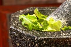 Salatblätter in der Zerkleinerungsmaschine Stockfoto