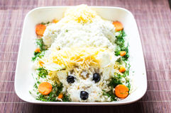 Salate des Käses und des Huhns stockfotografie