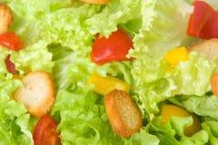 Salatnahaufnahme Stockfotos