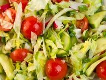 Salatnahaufnahme stockfotografie