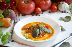 SALATpfeffertomaten-Karottenzwiebel Lecho Gemüse Lizenzfreies Stockfoto