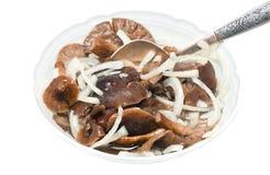 Salatteller mit marinierten Pilzen Stockfotografie