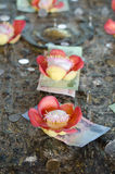 Salavan flower and Thai  money at Buddhakaya Chedi Royalty Free Stock Images