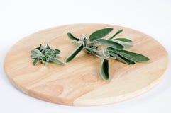 Salbeiblätter und -zweige auf rundem hölzernem Schneidebrett Stockfotos