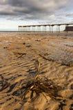 Salburn durch das Meer lizenzfreie stockfotografie
