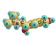 Salbutamol molekyl på vit Royaltyfri Bild