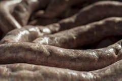 Salchichas de la carne fresca Imagen de archivo