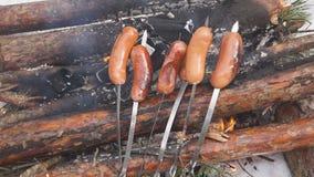 Salchichas jugosas deliciosas de la cámara lenta, cocinadas en la parrilla con un fuego metrajes