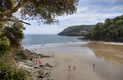 Salcombe, Devon Royalty Free Stock Photos