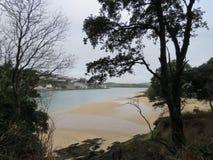 Salcombe-Mündung Stockfotos