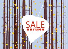 Sale autumn on an autumn leaf, fall, background landscape forest, tree trunks, template for banner, poster, vector. Sale autumn on an autumn leaf, fall Royalty Free Illustration