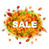 Sale. Autumn leaves. Vector fall sale poster / illustration. Autumn leaves Stock Photos