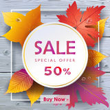 Sale Autumn leaves wood background Stock Photos