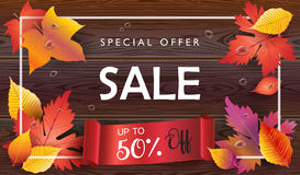 Sale Autumn leaves wood background Stock Image