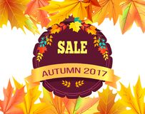 Sale Autumn 2017 Special Offer Promo Poster Leaves. Sale autumn 2017 special offer promo poster on background of leaves frame, logo design in form of stamp with Stock Image